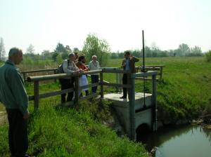 La paratoia vicino all'azienda Sorato costituisce un'occlusione che crea sì un'area di fitodepurazione, ma provoca allagamenti a monte