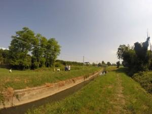 Tratto rettificato del rio Cimetto. Quest'area dovrebbe far parte del parco del Marzenego.