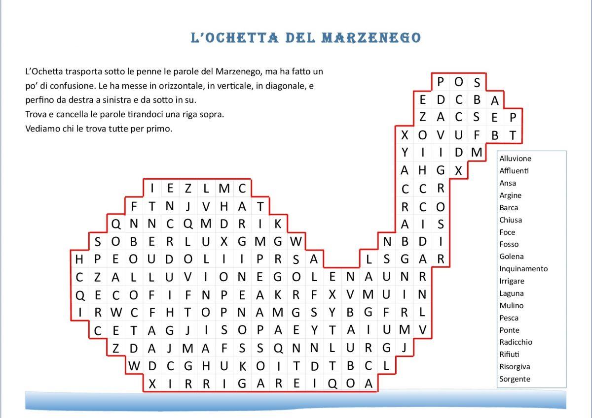 Ochetta-001 B