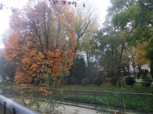 Il parco di villa Querini visto dalla sinistra fiume del Marzenego, ramo delle Moneghe o della Campana, lungo via Circonvallazione
